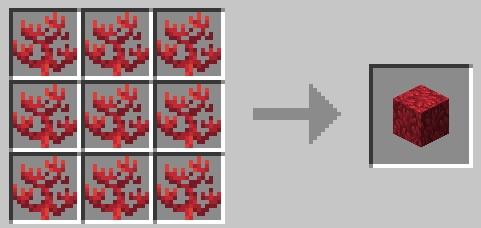 fire_coral_craft.jpg